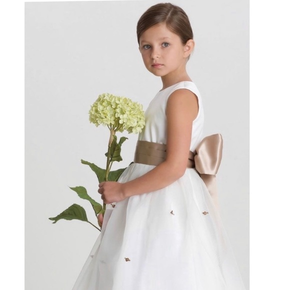 Us Angels Other - Us Angels Flower Girl/Communion Gown &Veil, SILVER